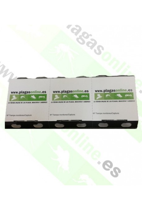 TRAMPA CAPTURA CUCARACHA ECO PACK 3 uds
