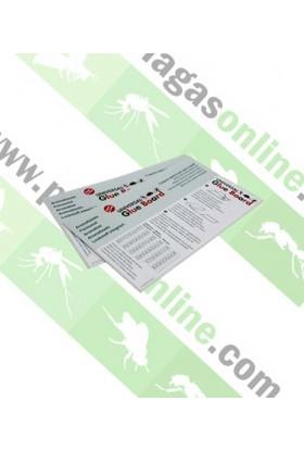 Trampas Adhesivas Glue Board PL