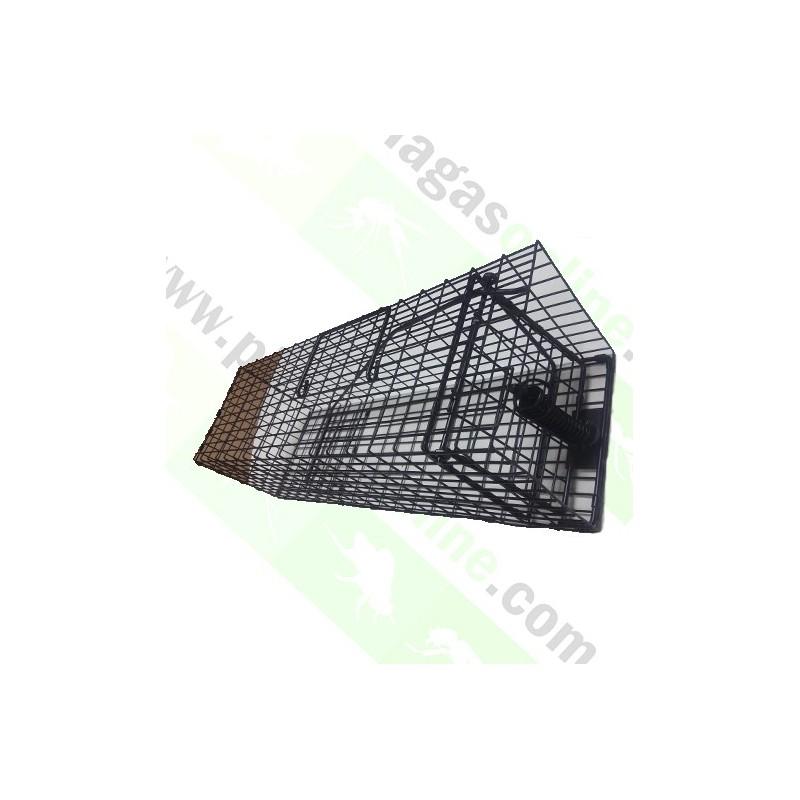 Agradable Trampas Para Cazar Ratas #4: Jaula-captura-ratas-gmb.jpg