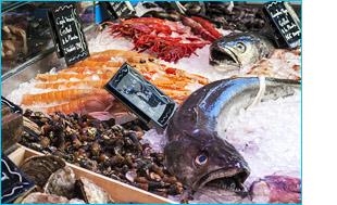aplicacion pescaderias.jpg